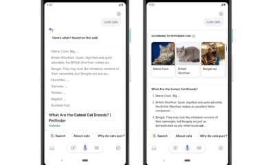 Google Assistant Updated results